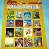 宮崎クラシックギターフェスタブログ<Vol.8>
