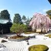 【京都】『高台寺』に行ってきました。 京都旅行 京都観光 国内旅行 京都桜