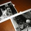現代写真研究所のレンタル暗室WSに参加してみた