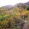 紅葉の雨飾山へ byつじまい