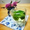 【自家製ミントティーの作り方】おすすめの美味しい飲み方、自宅でのミントの楽しみ方など
