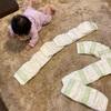 次女サンゴ、0歳6ヶ月 家庭保育園な働きかけ&DWE中
