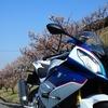 【ツーリング】「佐布里池の梅まつり」へバイクツーリングしてきた!絶品かつ丼もご紹介します。