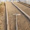 稲のプール育苗 プール木枠段取り 播種・伏せ込み