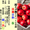 11/12 ミュージシャンリスペクト企画!~林檎日和~ライブレポート