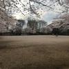 成増北第一公園(なりますきただいいちこうえん)
