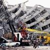 183 メキシコ発: 地震 世界13位 名言 地盤沈下...