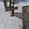 山行記 深入山 雪中行 (2/16) 東コース→林間コース