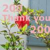 【はてなブログ】読者登録数が200人になりました!