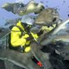 「サメに餌付け?館山で出来るの⁉」房総フラワーラインの旅 3伊戸ダイビングサービスBOMMIE(ボミー)