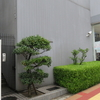 1丁目1番地#43 大阪市阿倍野区旭町