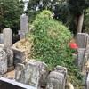 悲運の妃 照玉姫の霊を慰める 上臈塚の伝説(横浜市栄区)
