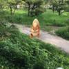 「Pokemon Go」で大阪城と扇町公園を回ってみました