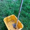 今朝は筍狩りと草刈り -リベンジ!-