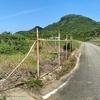 日本最西端の沈砂池(仮称)(沖縄県与那国島)