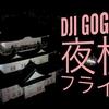 DJI Goggle『夜桜フライト』小田原城