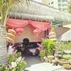 Bali Haiの飲茶ランチ(1,221円)と今日の買い物(455円)