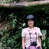 コスタリカ 倒れた巨木とカメラの発色