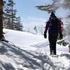 積雪量が例年並みに戻りつつある北八ヶ岳[茶臼山]♪