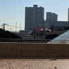 横浜で遊ぶ その➀ サーカスを見に行こう