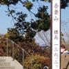 吾妻山 ローラー滑り台