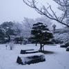雪の長崎市と金澤翔子さんの書展