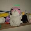 というわけで週末はアニメ 2012/2/23-