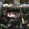 【心霊スポット】山梨県の首吊り社の白い女!神明社に関するレポート