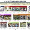 空港などで働く、検疫探知犬について調べてみた | 日本、台湾、韓国、中国