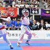 【大会結果】8月3日、4日開催「第19回全日本少年少女空手道選手権大会」