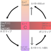 ネガティブハーモニーの代理コード化モデルからの展開