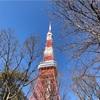 東京脱出やコロナ疎開に思う。東京の人間に逃げる場所はない。結局戻ってくるのなら、ここにいたいと思う。