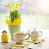 メンデルスゾーン:無言歌集【おすすめ名盤3枚を解説】春の歌でそよ風を感じよう♫