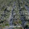 1127食目「寒い冬に美味しくなる野菜は意外と多いんです★」12月に旬を迎える野菜