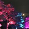 明智光秀探訪13 その1~福知山城光秀ミュージアム、福知山城、京都二条城イルミナージュ