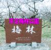 2021年 豊田市 梅の名所 平芝梅林公園【東海ドライブ】