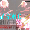 【BAY SONIC】LIVEレポート~Part2~