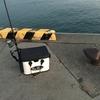 美々津漁港へカマス釣りに行ってきました^^~今日のHITルアーは・・・何がHITしたのかは・・・~