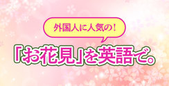 外国人に人気の「お花見」を英語で。誘い方やマナーも!