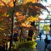 北鎌倉で紅葉を満喫する。by鶴岡八幡宮 Part9