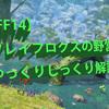 【FF14】ブレイフロクスの野営地を徹底攻略!超初心者でもOK!全ロール対応のコンプリート版!