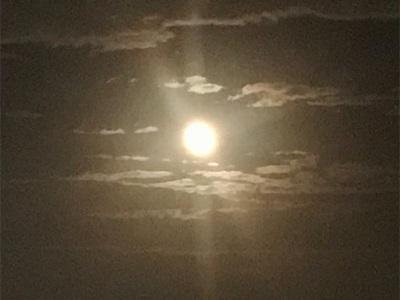中秋の名月〜美しく海を照らしています〜