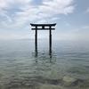 滋賀県屈指のパワースポット!近江の厳島とも称される白鬚神社について詳しく解説