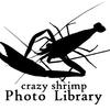 Crazy Shrimp's Photo Library