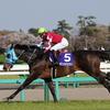 19/04/13 Japanese Racing