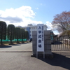 桜の花が満開の高校新入学おめでとう!挑戦なきところに成長なし、何事にもチャレンジ精神で