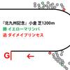 【北九州記念・2019年】チャンピオン相手に金星イエローマリンバ|逃げ馬レース結果