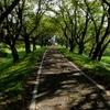 2017年9月13日(水)笹目橋から大芦橋周回 105kmライド Part 3/3