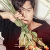 【歌詞訳】Kim Dongwan(キム ドンワン) / Red Shoes