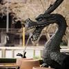 鎌倉散策「本覚寺~妙本寺~鶴岡八幡宮」(2017.03.29)
